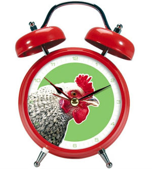 Alarm-clock-rooster